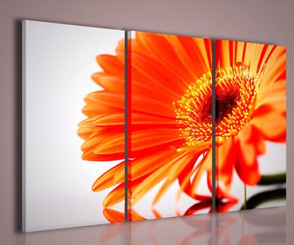 Quadri Moderni Per Ufficio : Quadri moderni quadri fiori e piante fantastic bloom stampe su