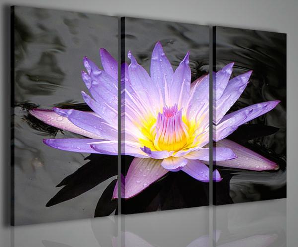 Quadri Moderni-Quadri Fiori e Piante-The Flower of Dreams | Stampe ...