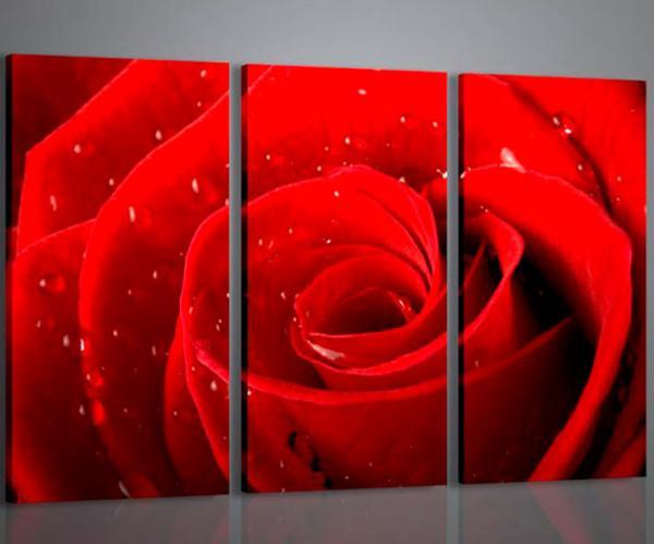 Quadri Moderni Per Ufficio : Quadri moderni quadri fiori e piante red rose i stampe su tela